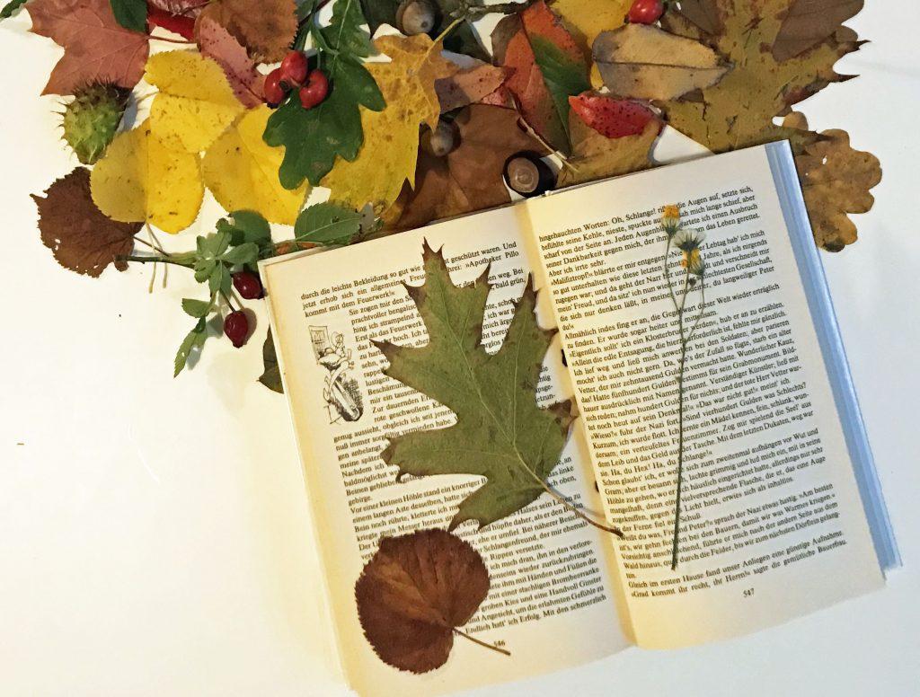 Blätter Pressen basteltipp für den herbst herbstlich willkommen kleiner laubigel