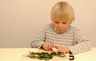 Grundschulblog Sachunterricht Experiment Herbst Blätter zerschneiden