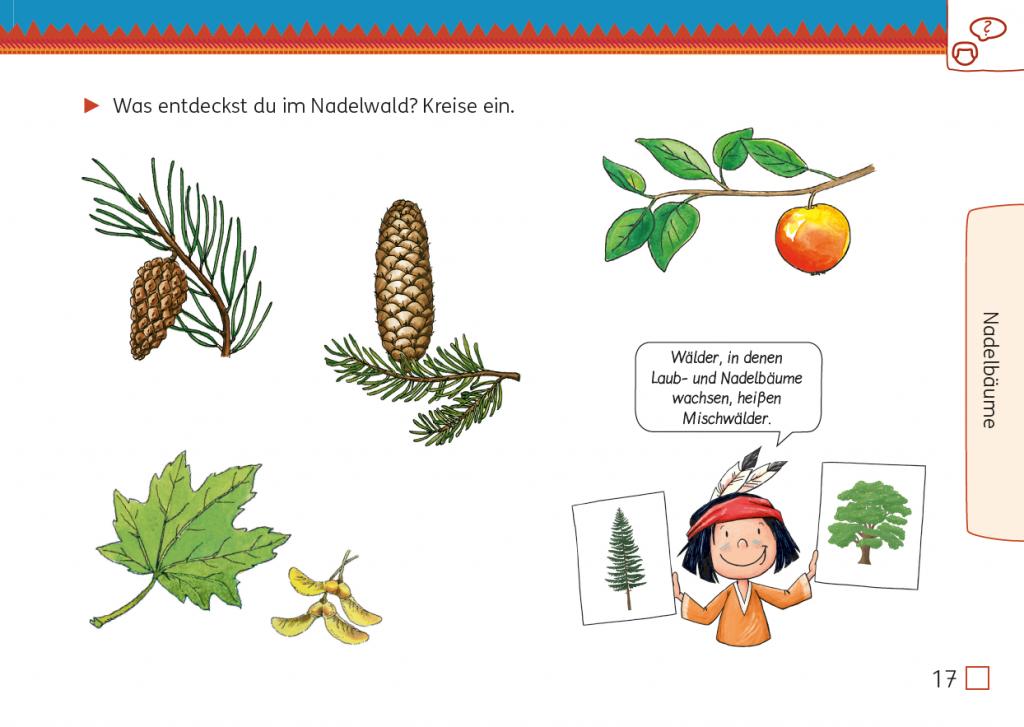 Meine Indianerheft Wald 3/4, Seite 17