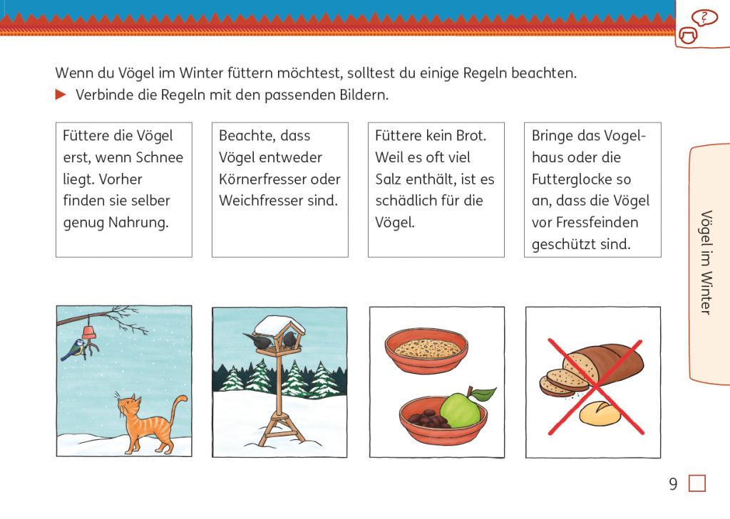 Sachunterricht, Mein Indianerheft Vögel, Seite 9