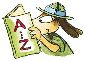 Hugo liest Wörterbuch
